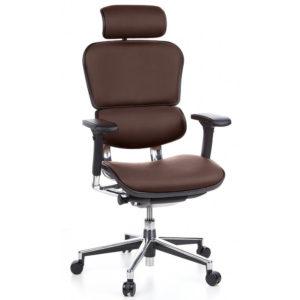 เก้าอี้เพื่อสุขภาพ รุ่น Ergo2-Leather