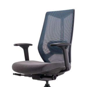เก้าอี้สำนักงานเพื่อสุขภาพ รุ่น A-COR Chair