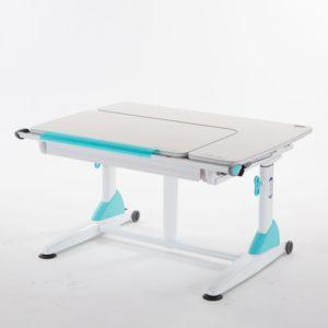 โต๊ะเพื่อสุขภาพ SD3L